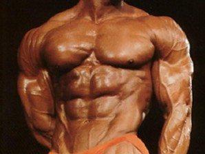 musclemass Masa musculara – programe de antrenament