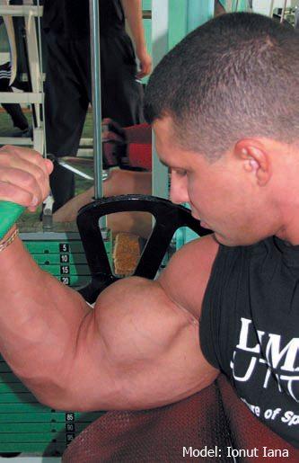 antrenament bicepsi