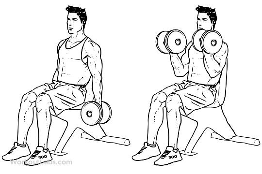 exercitii-pentru-brate