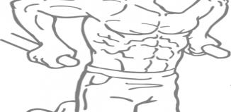 flotari paralele tricepsi 326x159 Acasa