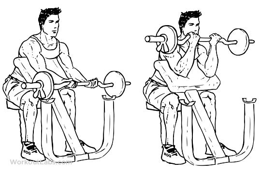 exercitii-brate