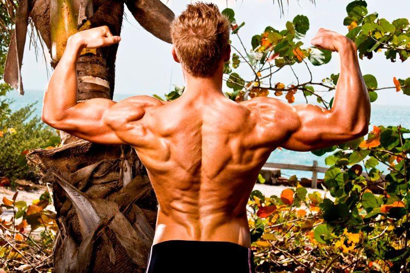 cresterea-musculara-in-off-season