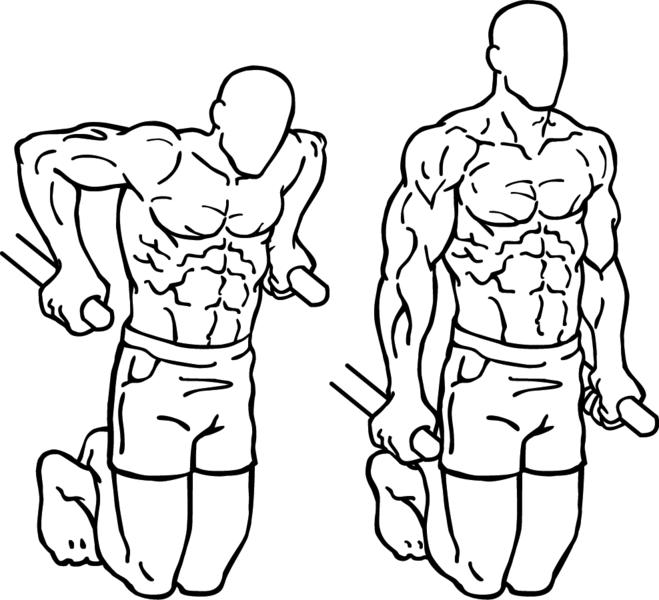 flotari-paralele-tricepsi