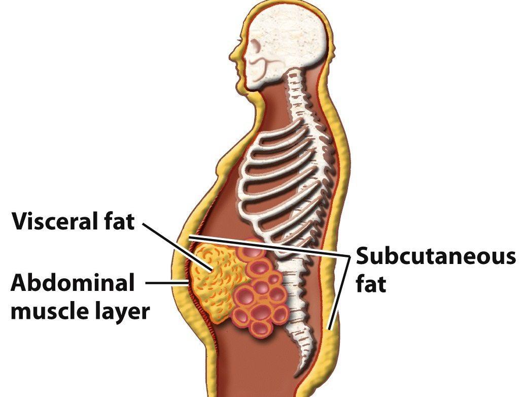 cel mai eficient regim de pierdere în greutate