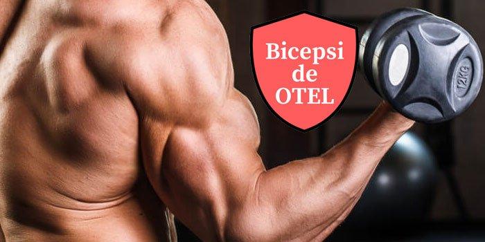6 exercitii pentru bicepsi de otel