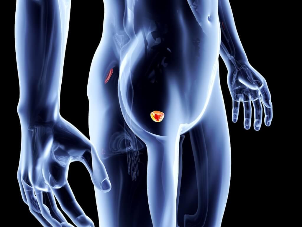 Probleme cu prostata: cauze, remedii naturale si dieta   prostatita.adonisfarm.ro