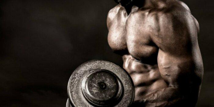 iluzele de stocare a glicogenului de pierdere ușoară în greutate