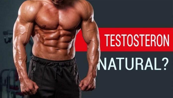 Totul despre cresterea naturala a nivelului de testosteron