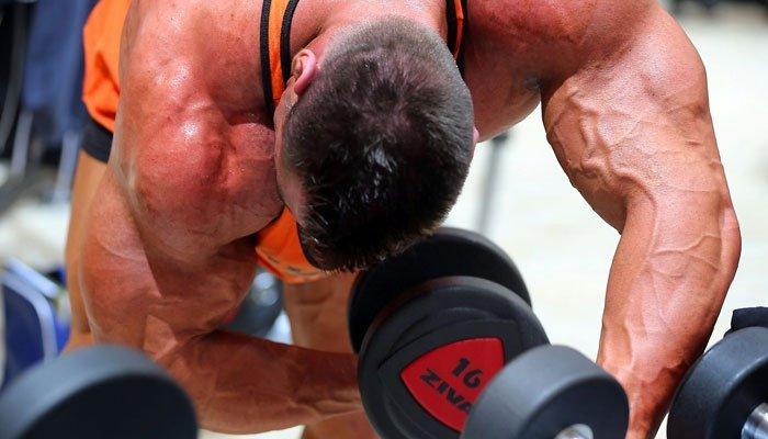 Care este esenta acumularii de masa musculara?
